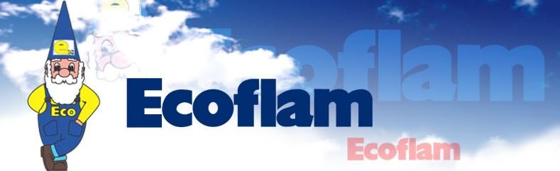семинар Ecoflam